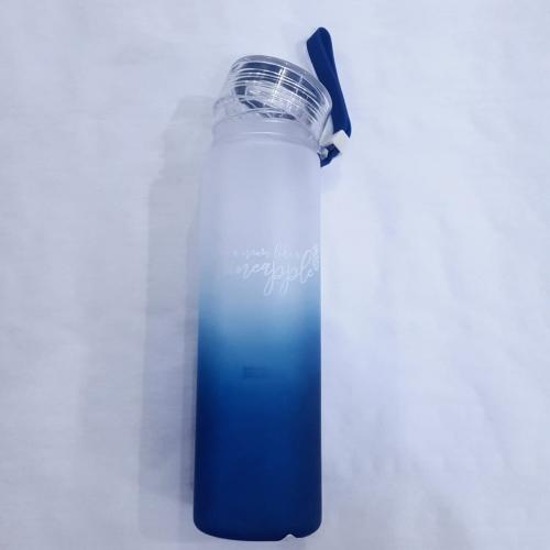 GARRAFA DERMIWIL BLUE ABACAXI 500ML