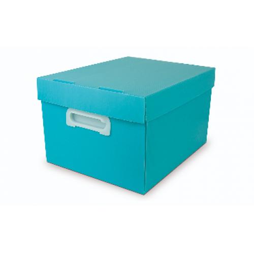 CAIXA ORGANIZADORA POLIBRAS BEST BOX G PASTEL VERDE